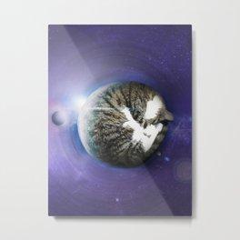 The Sleeping Cat Metal Print