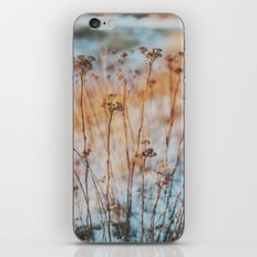 winterlight iPhone & iPod Skin