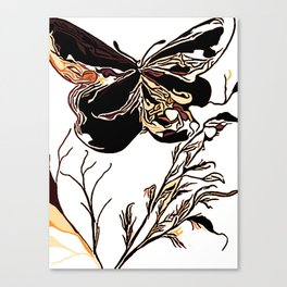 On Butterfly Wings Canvas Print