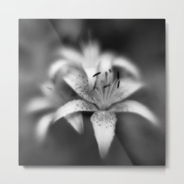 Botanica Obscura #9 Metal Print