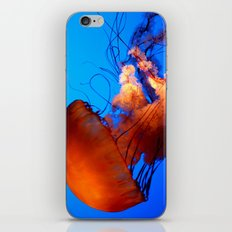 Underwater Dancer iPhone & iPod Skin