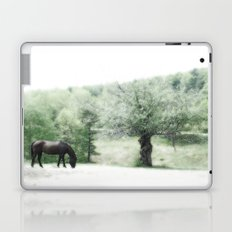 Horse and Tree Laptop & iPad Skin