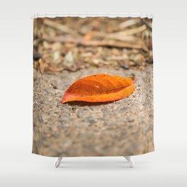 Orange leaf lying on the street Shower Curtain