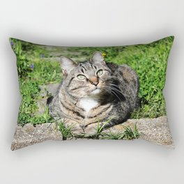 Thinking Cat in Sunlight Portrait Photography Rectangular Pillow