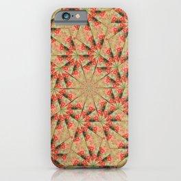 Beautiful day lily kaleidoscope iPhone Case