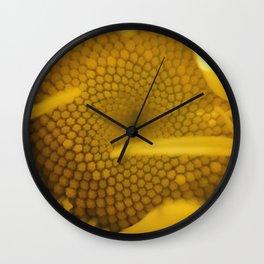 "Leucanthemum, ""Shasta Daisy"" Wall Clock"