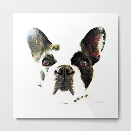 French Bulldog Art - High Contrast Print by Sharon Cummings Metal Print