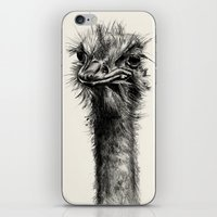 ostrich iPhone & iPod Skins featuring Ostrich  by Ink Odyssey