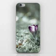 Persistence iPhone & iPod Skin