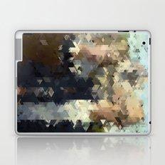Panelscape Iconic - American Gothic Laptop & iPad Skin
