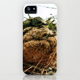 Hatchlings iPhone Case