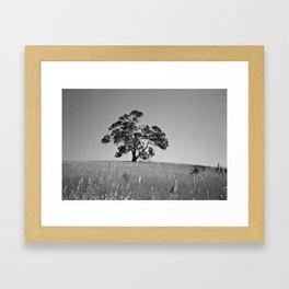 Australian Landscape Framed Art Print