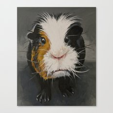 Toby the Guinea Pig Canvas Print