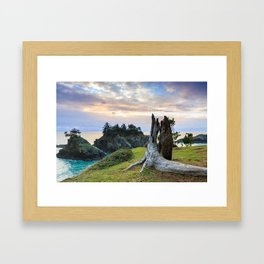 Lonely Tree Stump Framed Art Print