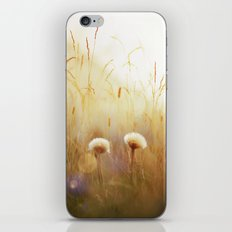 Dandelions iPhone Skin