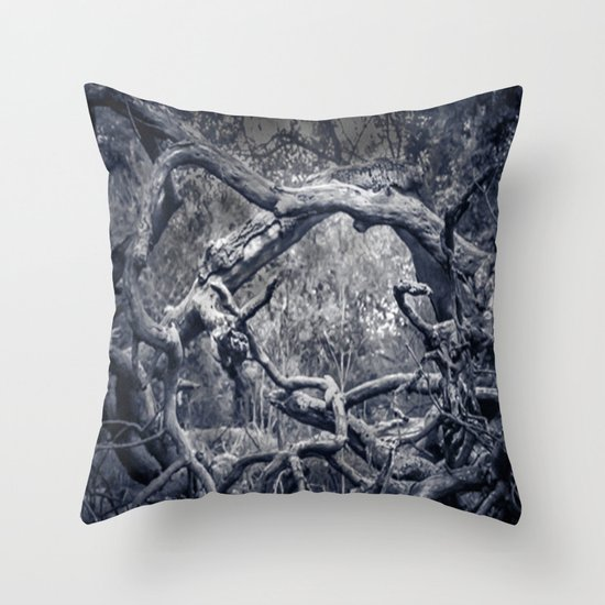 Twisted Window Throw Pillow