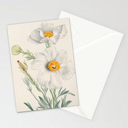Matilija Poppy Botanical Illustration, Mary Vaux Walcott Stationery Cards