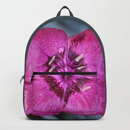 Square Dianthus Backpack