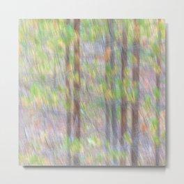 Baby pine trees Metal Print