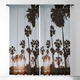 palm trees vi / venice beach, california Blackout Curtain