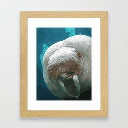 Walrus face to face Framed Art Print