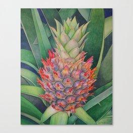 Ornamental Pineapple Canvas Print