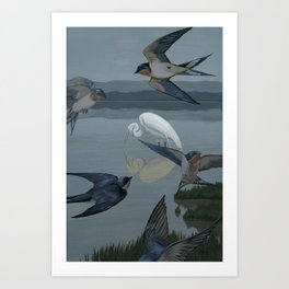 The Barn Swallows' Welcome Art Print