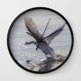 swan flying skimming the water on lake Wall Clock