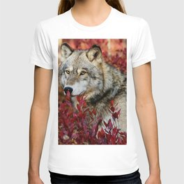 Wolf in red foliage T-shirt