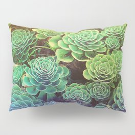 Succulents Pillow Sham