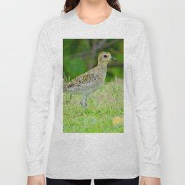 Pacific Golden Plover Long Sleeve T-shirt