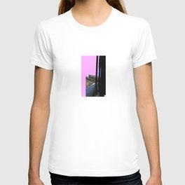 Pink sunlight_second edition T-shirt