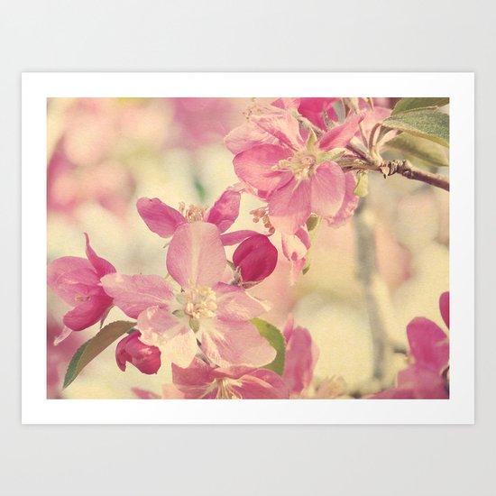 Pink Crabapple Blossom Art Print