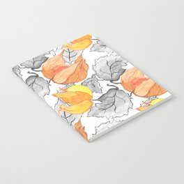 The Physalis Notebook