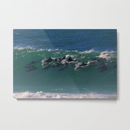 Wave Series Photograph No. 27 - Pod of Dolphins Surfing the Waves Metal Print