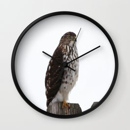 Looking for Mice Wall Clock