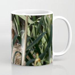 Among the daffodils Coffee Mug