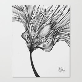 5-21-09 Canvas Print