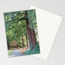Shady Path 2012-01-04 14.09 Stationery Cards