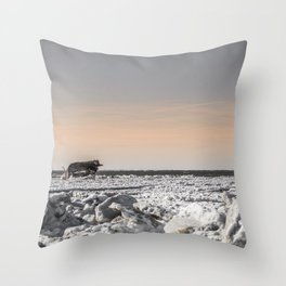 Icy Edge Throw Pillow