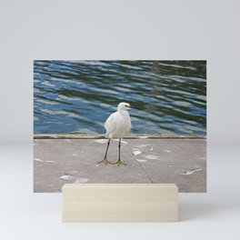 Weekend Willy Mini Art Print