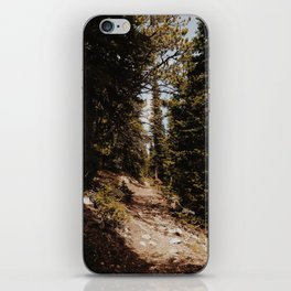 Summer Trail iPhone Skin