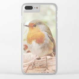 You are more valuable Clear iPhone Case