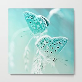 day moths turquoise aesthetic wildlife art altered photography Metal Print
