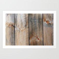 Barn J Art Print