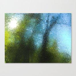 Outside World Canvas Print