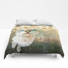 Hunger Games Comforters