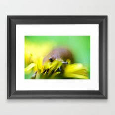 slug life Framed Art Print