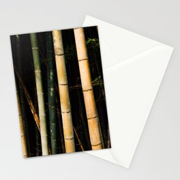 Bamboo Spectrum Stationery Cards