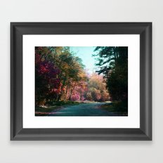 The road through the forest Framed Art Print